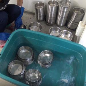 豆柴の食器の洗浄